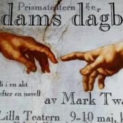 Affisch för Adams dagbok